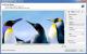 Handy Image Mapper