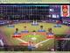 Pennant Fever Baseball 2013